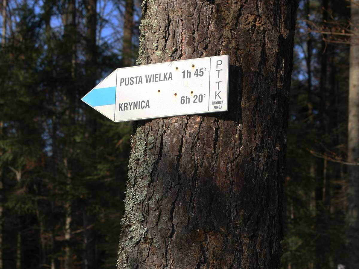 Szlaki piesze PTTK Żegiestów-Zdrój